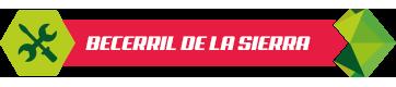 Servicio tecnico de calderas en Becerril de la Sierra